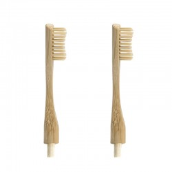 "2 Replacement Heads for ""Headless"" Bamboo Toothbrush"