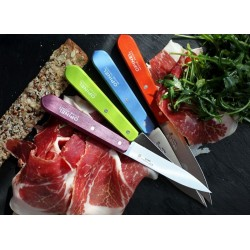 Fruit and vegetable peeler knife