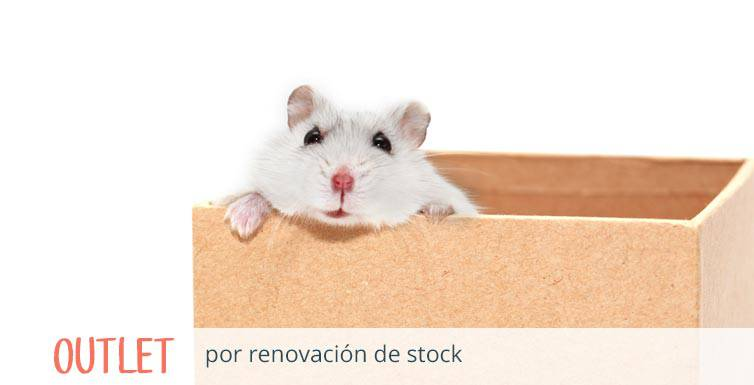 Outlet por renovación de stock